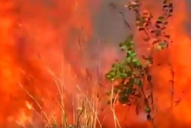 amazzonia-sta-bruciando